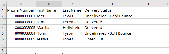 Delivery Report Example.png